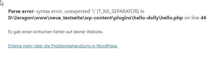 Kritischer Fehler auf einer WordPress-Webseite