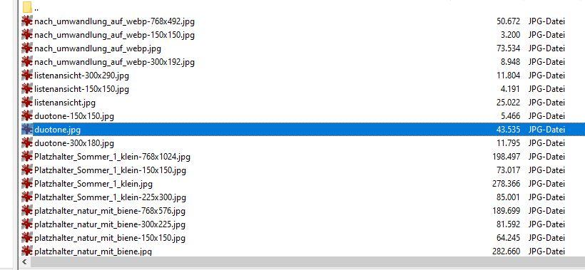 Verwendung des WebP-Grafik-Formats: Originalgrößen der Bilder